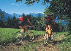 Mountainbike-Tour in the mountains
