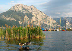 Holiday region Traunsee